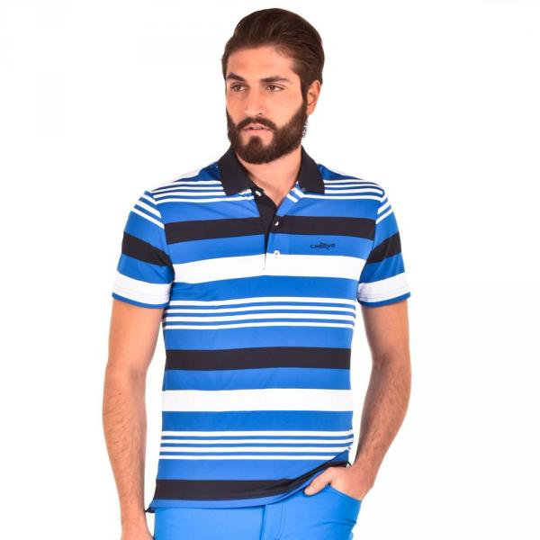 Polo Uomo AMILANO 56415 Blu Bianco Royal Chervò