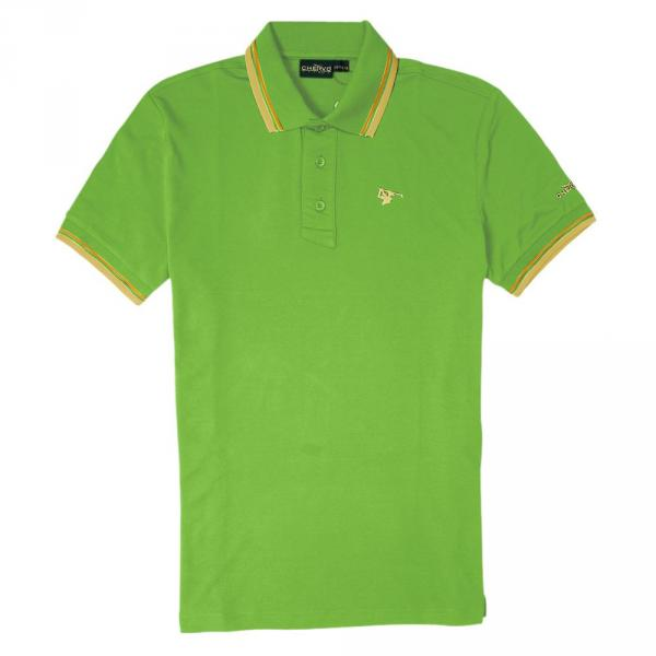 Polo Man ARTIGLI 56380 Apple Green Chervò