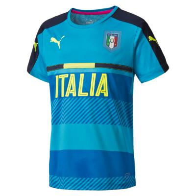 Puma Bonneterie de Formation FIGC Training Jersey Italy