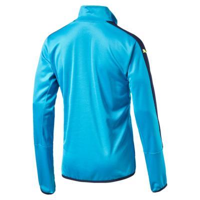 Puma Sweatshirt Figc 1/4 Zip Training Top Italy