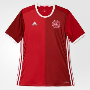 Denmark Jersey Replica Home