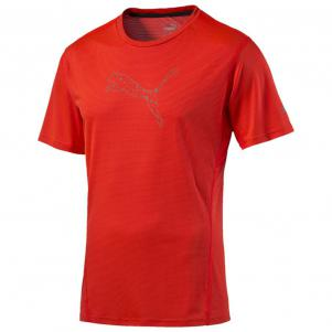 Puma T-shirt NightCat S/S Tee