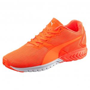 Puma Scarpe IGNITE Dual NIGHTCAT