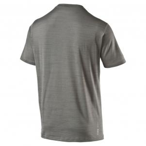 Puma T-shirt Nightcat S/s Tee